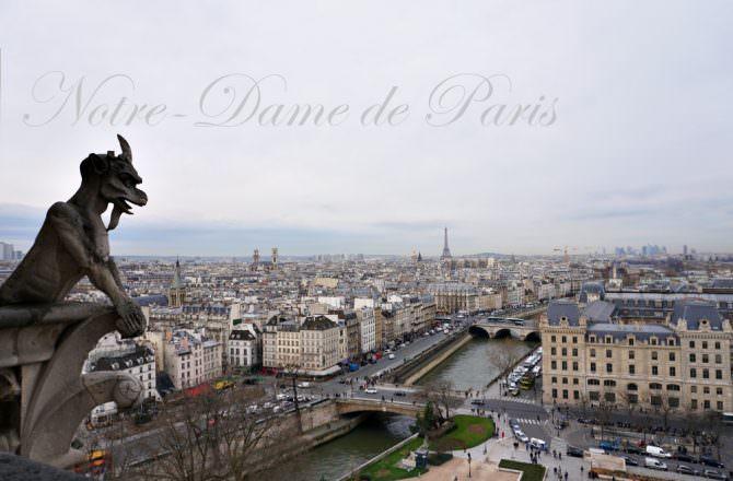 【巴黎好玩推薦】爬到腳軟聖母院 哥德式建築怪獸雕像景色超美 絕對是巴黎必訪景點啦!