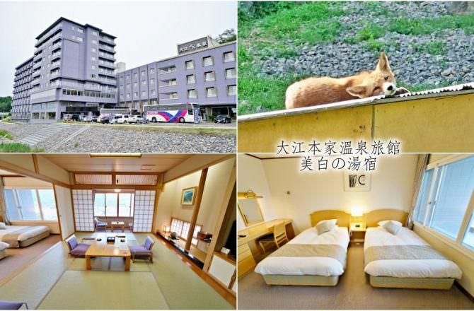 【北海道 北見住宿】大江本家溫泉旅館 美白の湯宿 北見狐狸牧場 北見旅遊景點分享